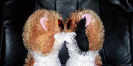 Our two freaky stuffed-animal cats kissing.